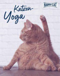 HC_Yoga-1